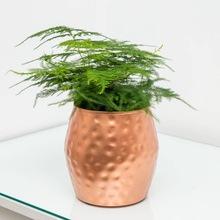 commercial planters pots