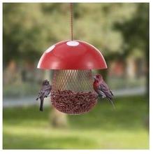 House Shape Bird Feeder