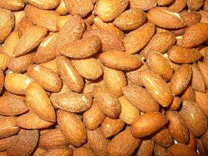 Zohar Farm Succulent Apricot Seeds