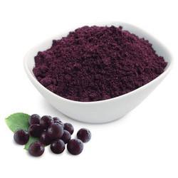 Elder Berry Powder (HRP0127)