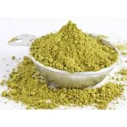 Gymnema Sylvestre Powder (HRP0155)