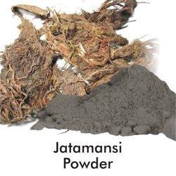 Jatamansi Powder (HRP0144)