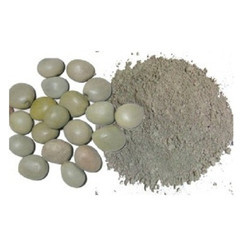 Kaunch Beej Powder (HRP0059)