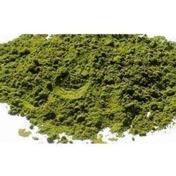 Pudina Powder (HRP0122)