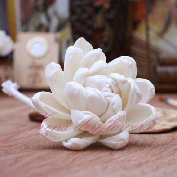 Mokka Sola Wood Flower