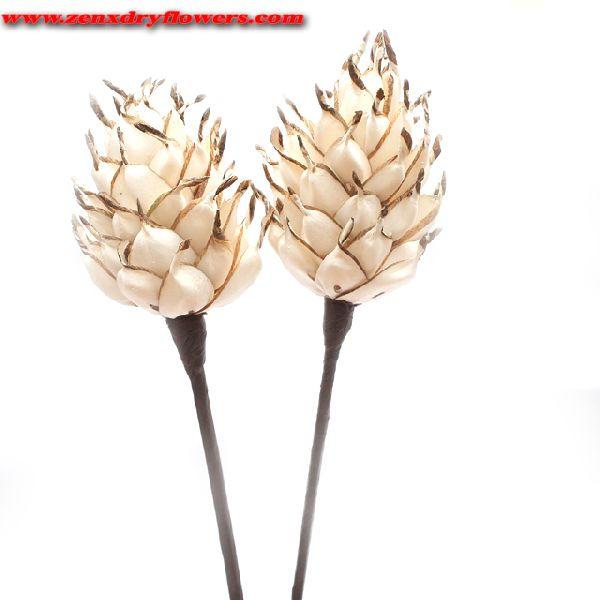 Sola Pine shape Wood Flower