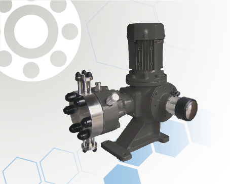 Libra Series  Hydraulic Double Diaphragm Metering Pump
