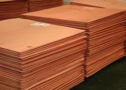 Copper Cathodes (copper cathode)