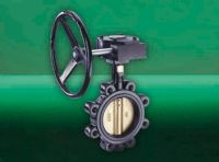 BUTTERFLY VALVE DI