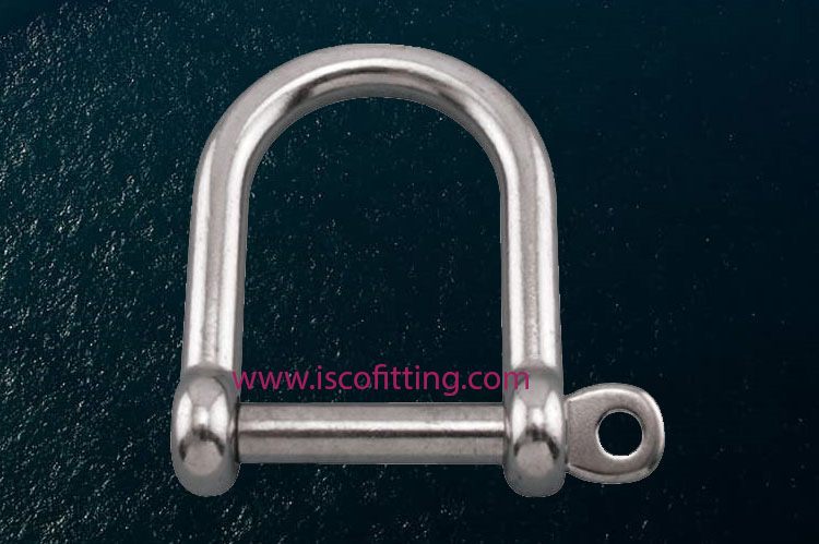 Stainless Steel Screw Pin Wide D Shackles Manufacturer in