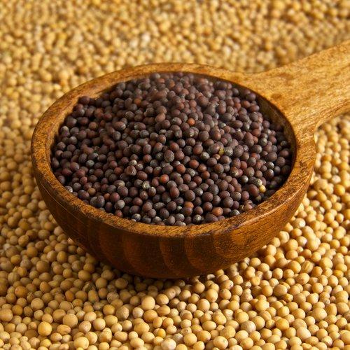 Natural Mustard Seeds