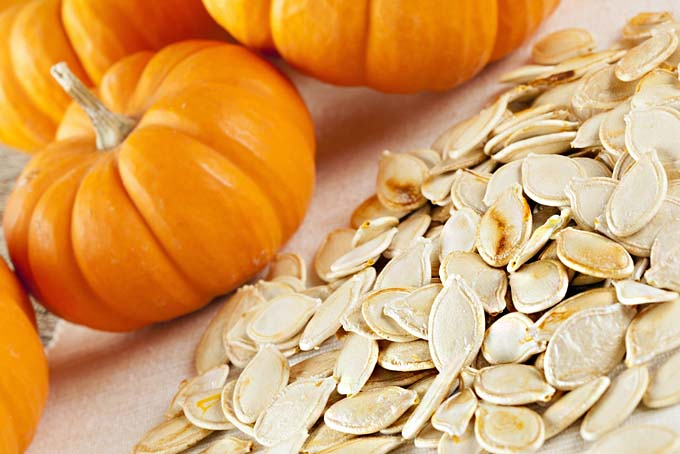 Fresh Pumpkin Seeds Exporters in Sandton South Africa by Netro ...