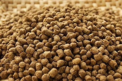 Flavoured Fish Feed Manufacturer & Exporters from Guntur, India | ID -  4694681