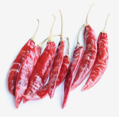 SANNAM DRIED RED CHILIES