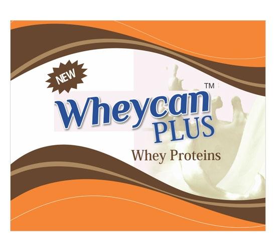 Whey Plus Protein Powder