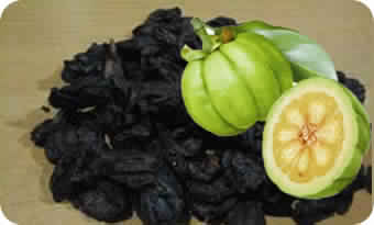 Garcinia Cambogia Rinds Manufacturer Exporters From India Id 4919642