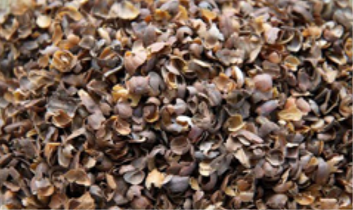 Brown Coffee Husk