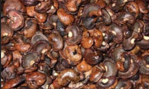 Cashew Nut Shell Cake (89013290)