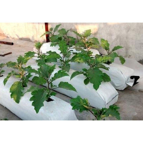 Lay Flat Grow Bag