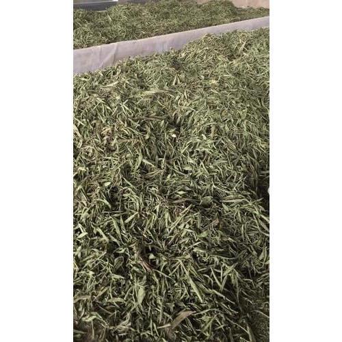 Natural Dry Stevia Leaf