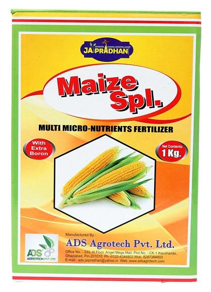 Maize Special