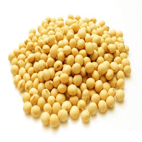 Whole Soybean Seeds