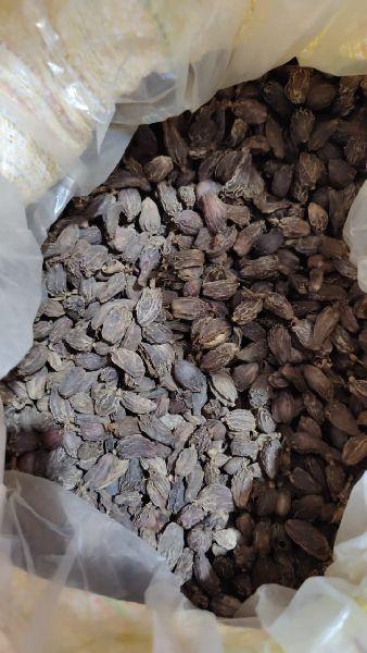 Black Cardamom (blcrd)