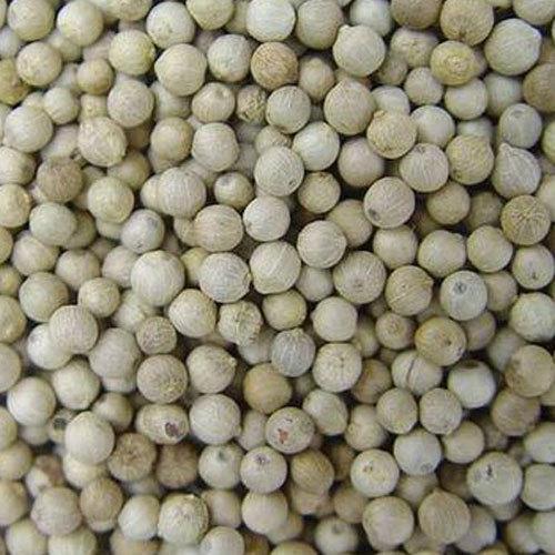 White Pepper (sjm0018)