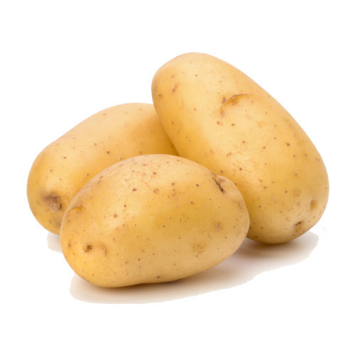 Fresh Potato