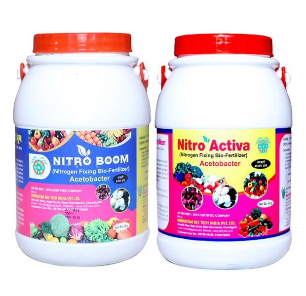 Acetobacter Bio Fertilizer