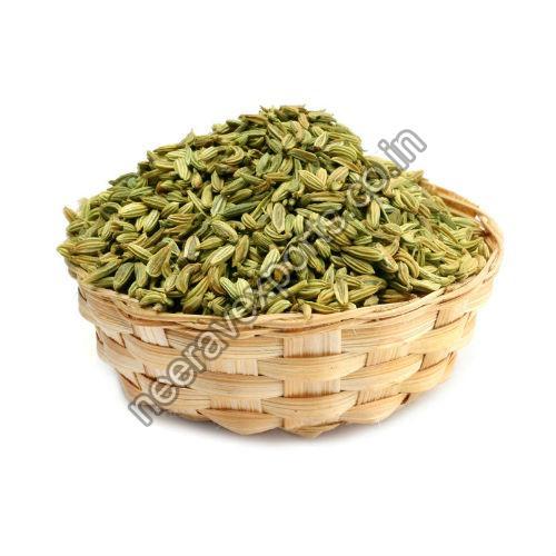 Big Fennel Seeds