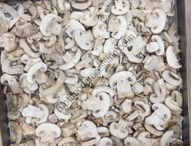 Freeze Dried Button Mushroom