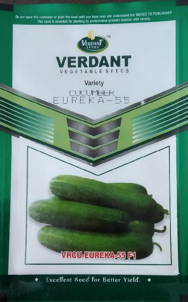 Hybrid Cucumber Seeds