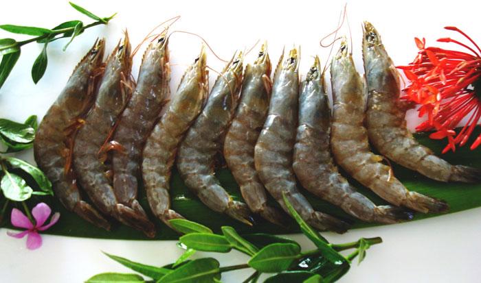 Buy Vannamei shrimp from Frish Seafood India, Mumbai, India