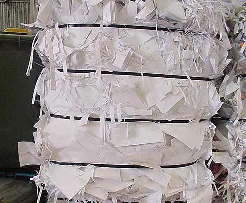 Paper Scrap Manufacturer & Exporters from Navi Mumbai, India