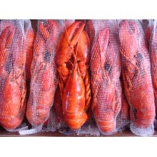 Whole Cooked Frozen Lobster