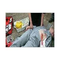 First Aid Training Services