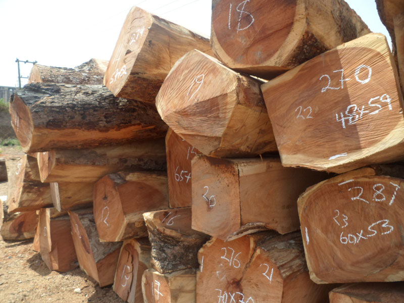 Bubinga Wood Timber