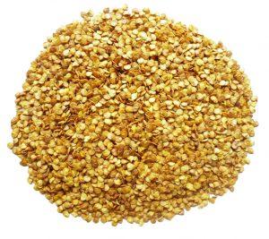 Chilli Seeds (pec11)