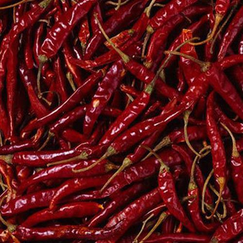 Indian Red Chilli (pec)