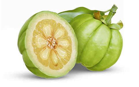 Garcinia Cambogia Fruit Manufacturer In Bangalore Karnataka India By Nisarga Naturals Id 2716578