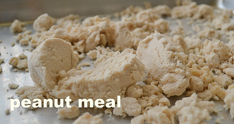 Peanut Meal