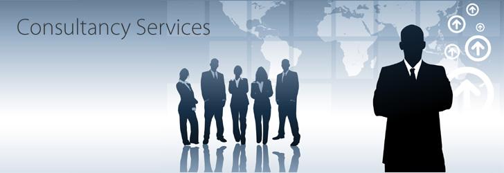 rendering consultancy services
