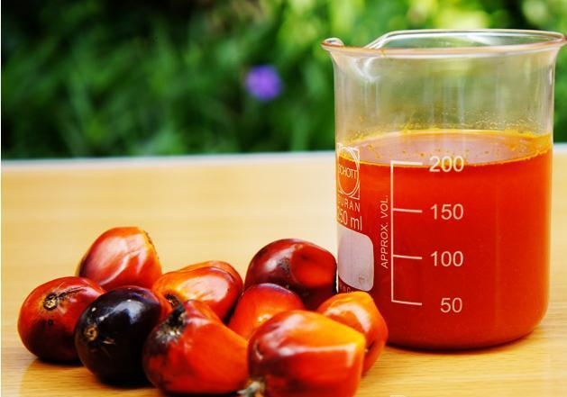 Cooking Palm oil