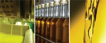 Cattle Seed Oil