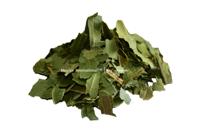 Dehydrated Neem Leaf