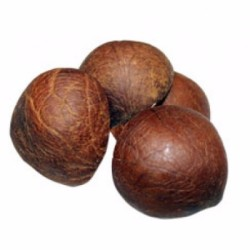 Dried Whole Coconut Copra