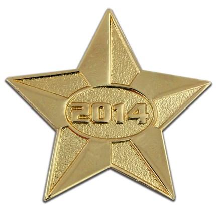 2014 Gold Star Pin