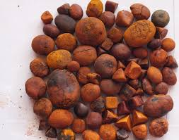 High Quality 80/20 Cow/Ox/Cattle Gallstones
