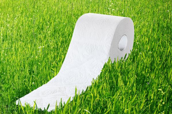 Hygienic Tissue Paper
